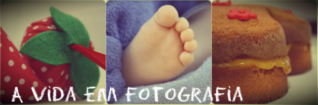 A vida em fotografia