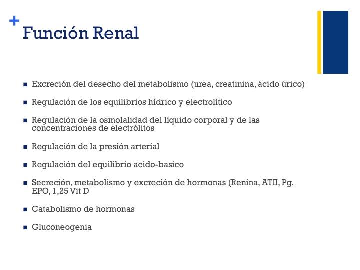 Clases de Nefrología Facultad EnfermerÍa Univ de Guanajuato ...