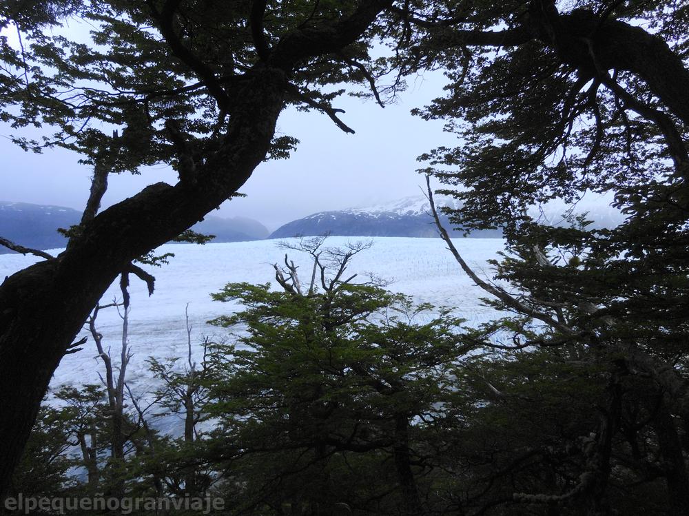 Glaciar Grey, Torres del Paine
