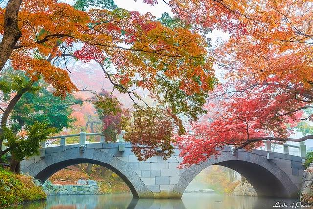 Impian untuk membawa ahli keluarga melancong ke Korea