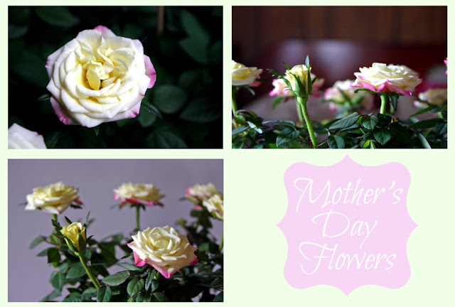 mother%27sdayflowers Mothers Day Flowers