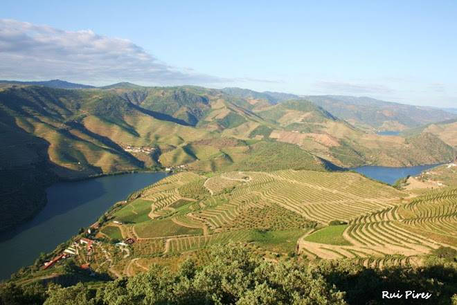 SOBRE O DOURO...