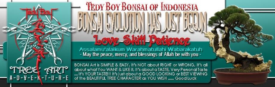 Bonsai Store of Tedy Boy Bonsai Indonesia bali europe america usa japan china cina russia