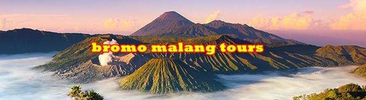 Paket Wisata Bromo Malang Batu Kawah Ijen Tour