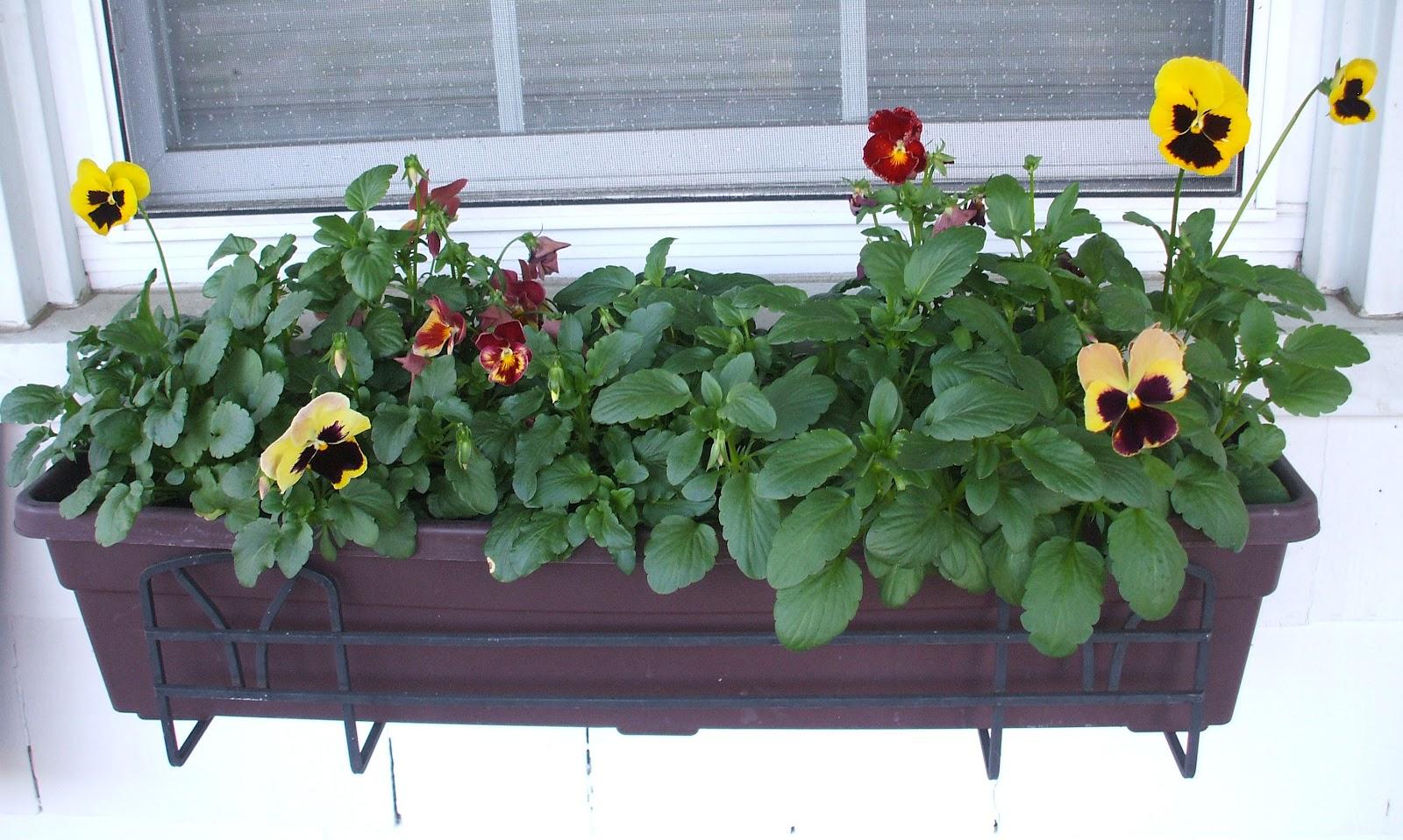 Suburban Gardeness Front Flower Bed Border