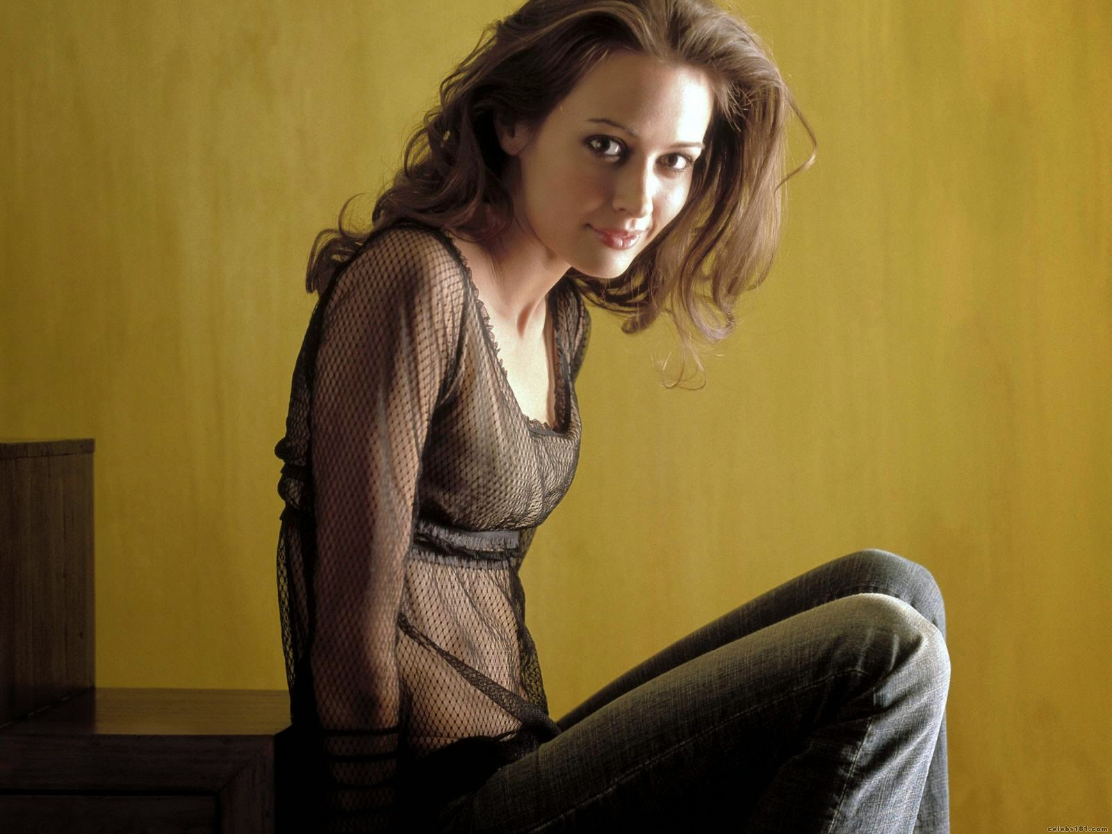hollywood actress wallpaper: amy acker hd wallpapers