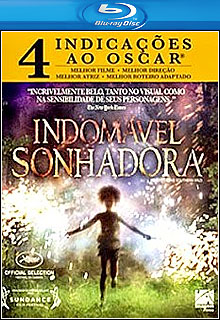 Download - Indomável Sonhadora BluRay 1080p + 720p Dual Áudio ( 2013 )