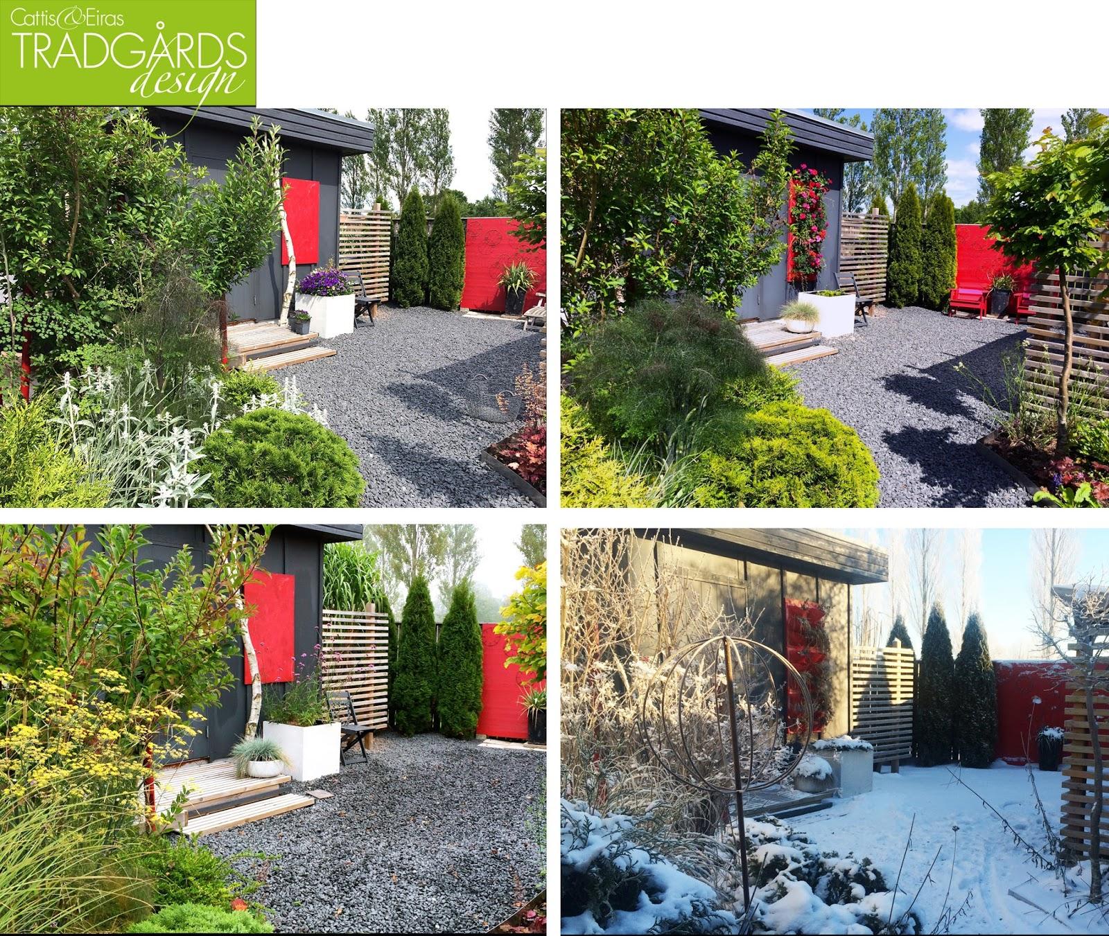 Cattis och eiras trädgårdsdesign: januari 2016