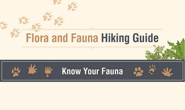 Flora and Fauna Hiking Guide