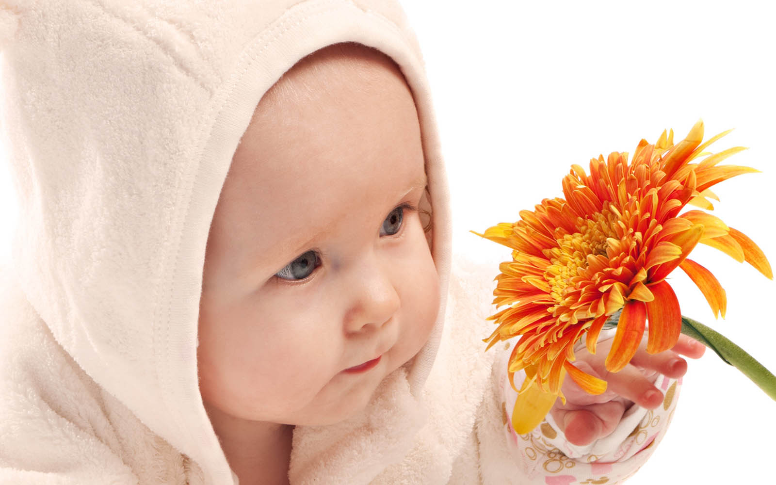http://4.bp.blogspot.com/-05vvl0Z49X0/UOWh-iWfe0I/AAAAAAAAQiM/CgOSuu7CkAg/s1600/Innocent+Babies+Wallpapers+07.jpg