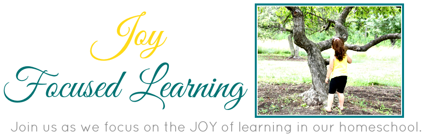 Joy Focused Learning