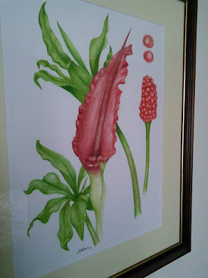 Dragon Arum Painting