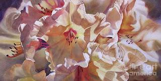 Cuadros de Acuarelas Pinturas Flores Blancas