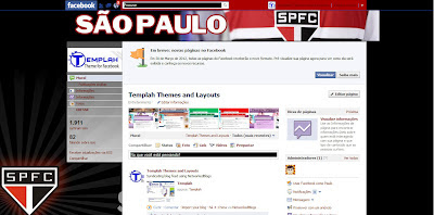 facebook skin layout - Tema para Facebook com So Paulo