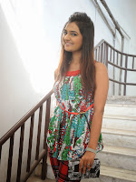 Neha deshpande Photos at Dil Diwana press meet-cover-photo