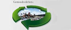 Environnement Algerie valorisation 2013