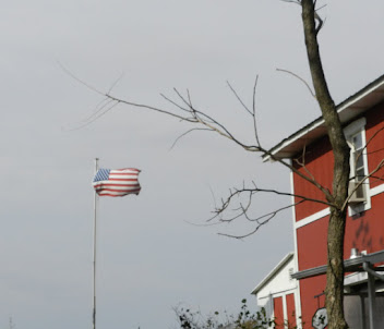 Old Glory with a South wind