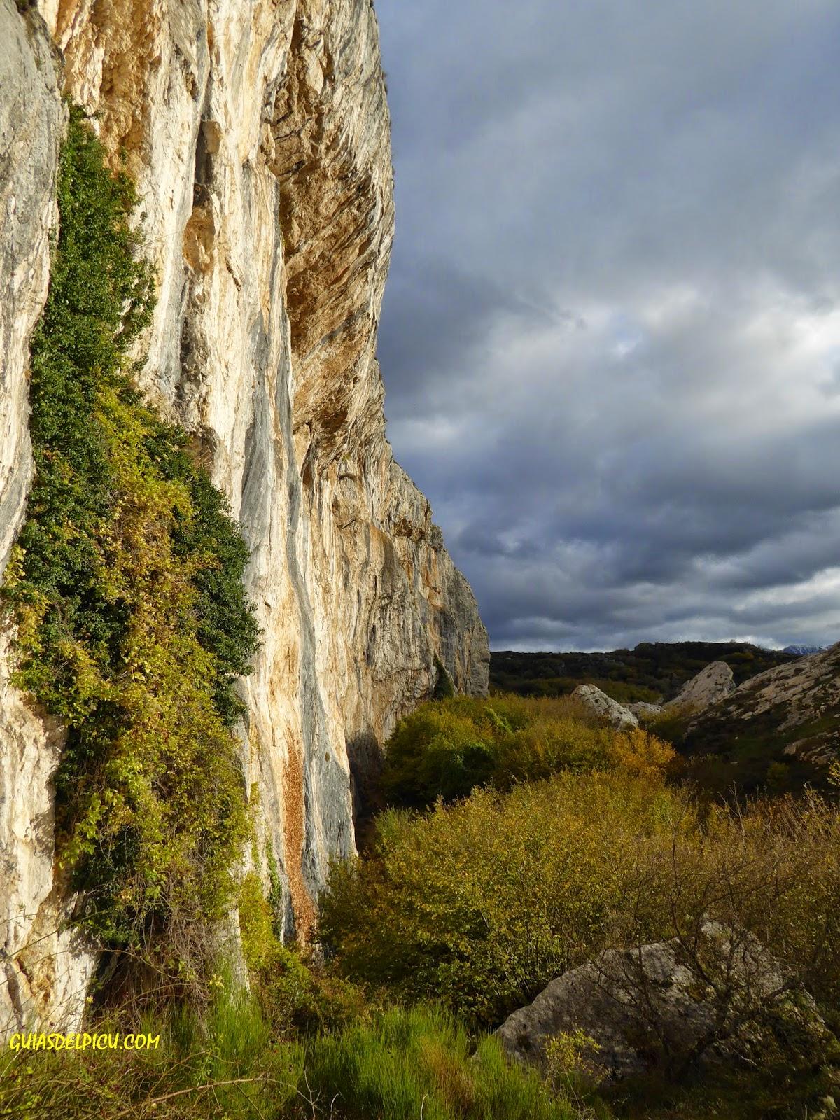 Guias del picu, guia de alta montaña, especialista en escalar el naranjo de bulnes , Fernando Calvo