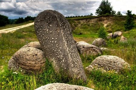 Batu Ini Hidup Bisa Tumbuh Dan Berkembang Menjadi Besar