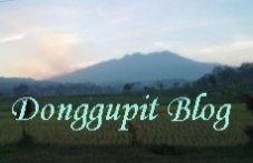 Donggupit blog