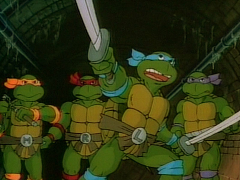 Ninja Turtles Picture Wallpaper Funny