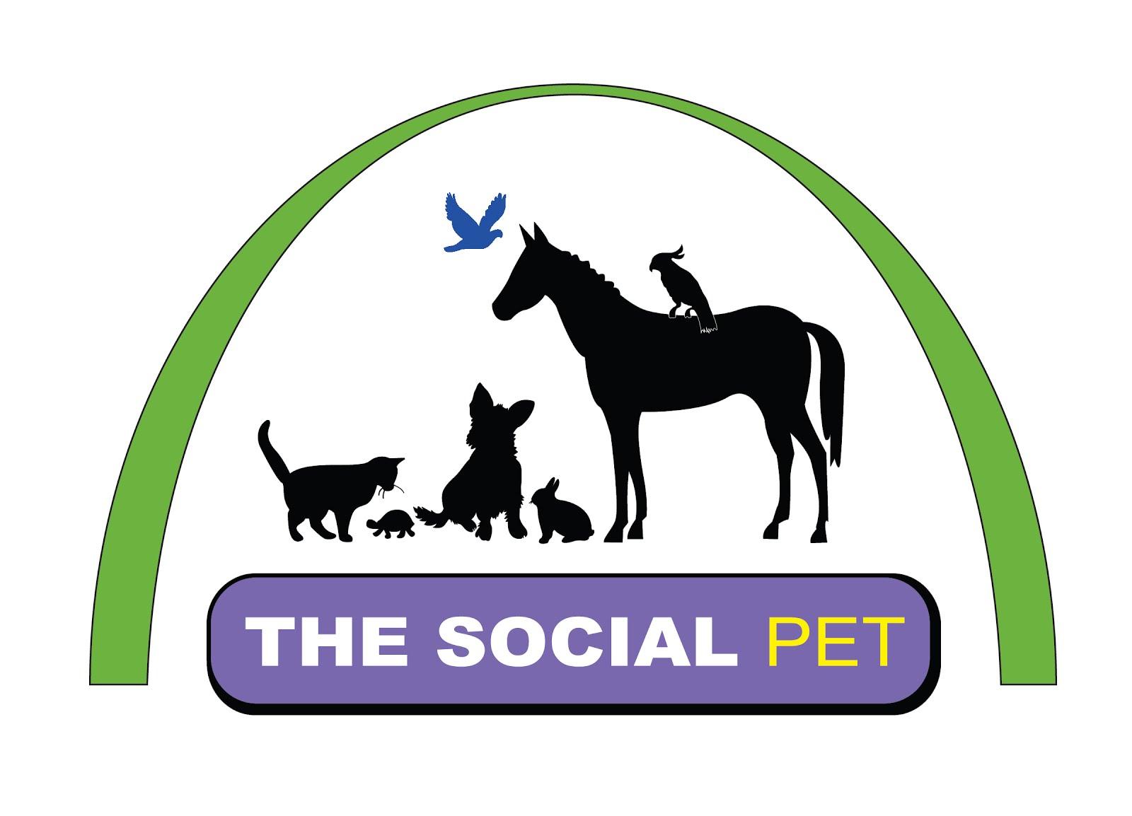 The Social Pet