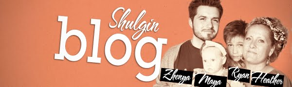 Shulgin Blog