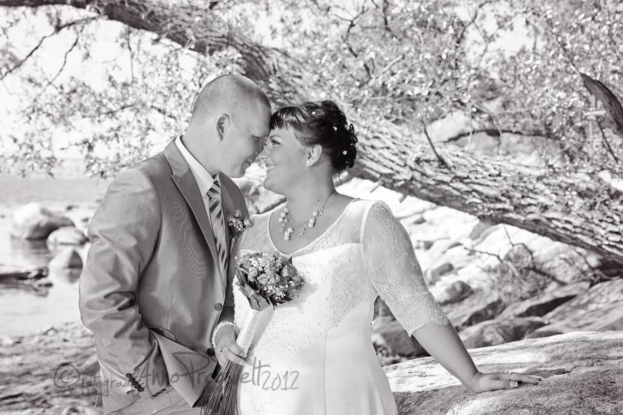 pruutpaar-pulmad-pirital