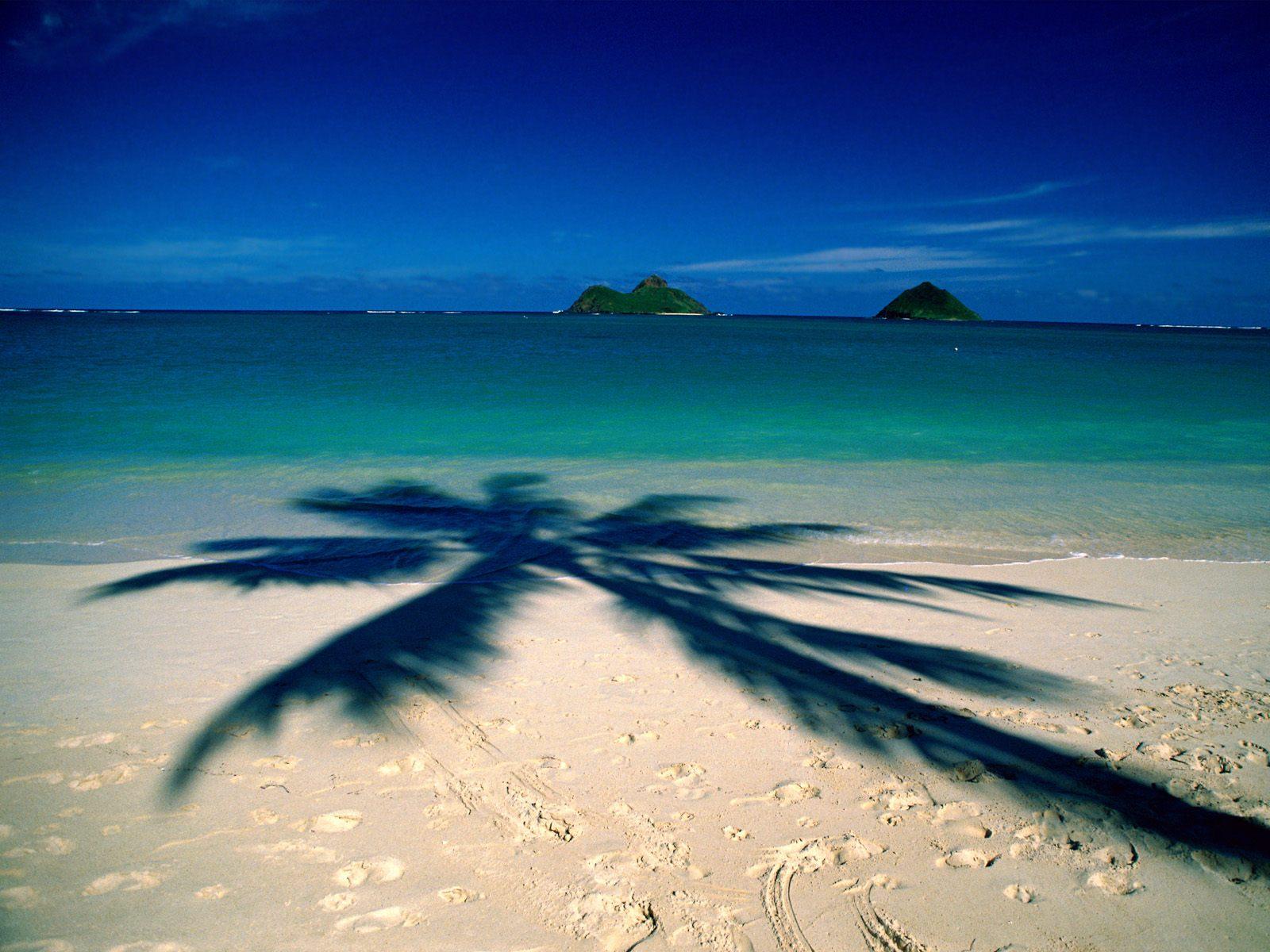saw the Hawaiin islands