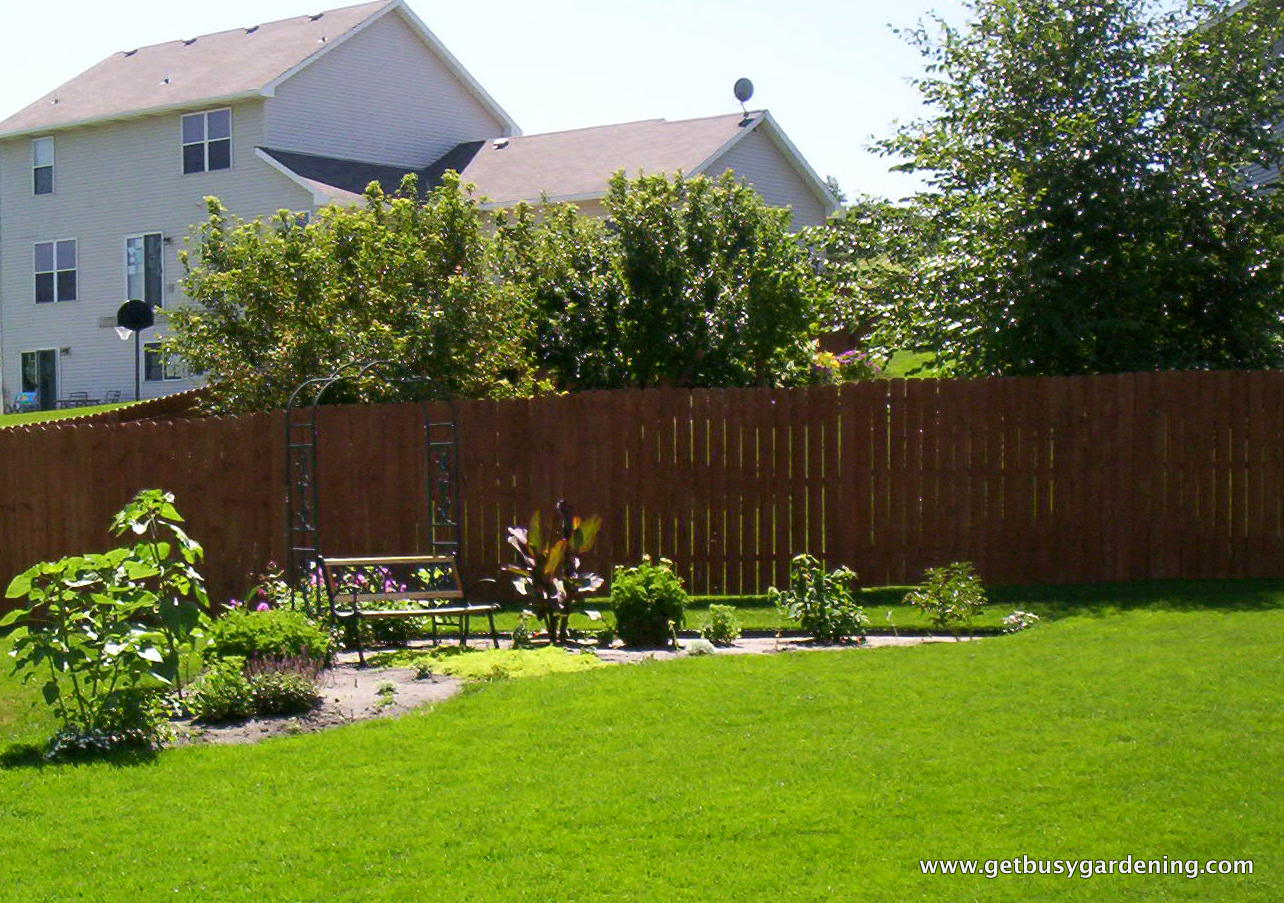 Perennial Relocation Project - Get Busy Gardening