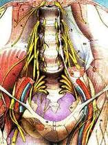 Il trattamento ha spinto con un soffio una faccia e un collo