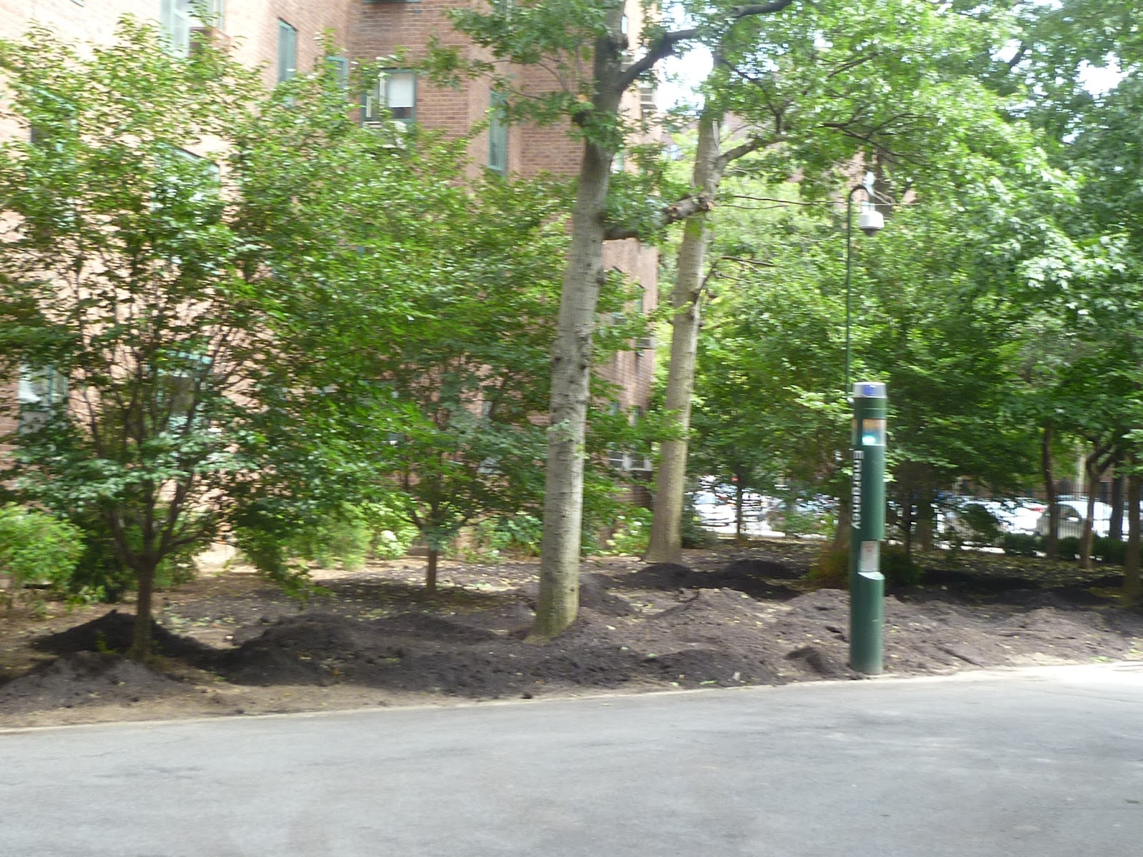 The new york squirrel dirty old stuyvesant town peter for Cooper village