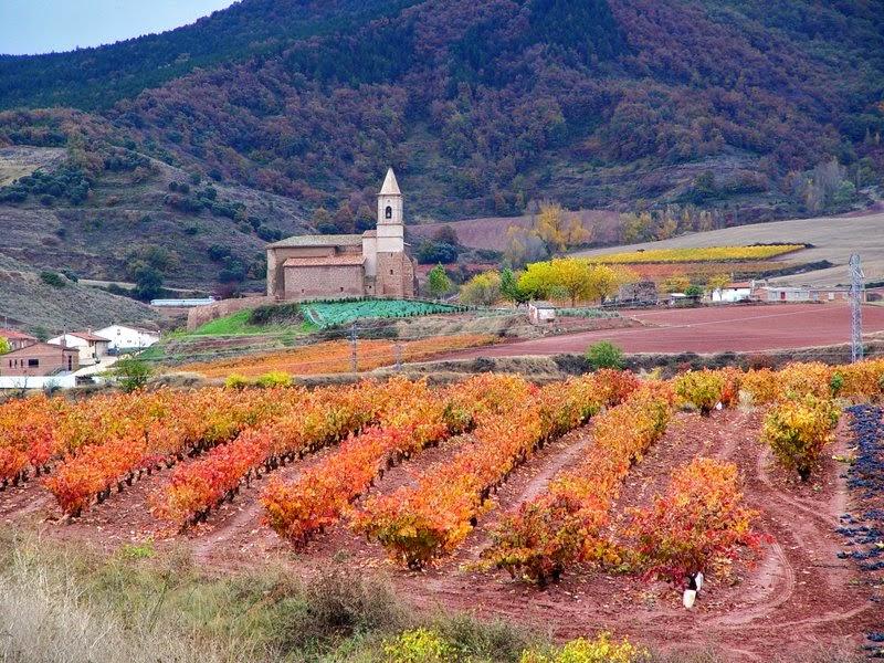 LA RIOJA Paisaje Cultural del Vino y el Viñedo - Clicar foto