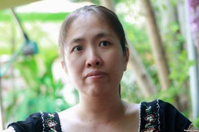nguoicondatme, Bộ Mặt Thật Của Các Nhà Dân Chủ, Bình Luận - Phê Phán