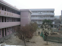 Bad School
