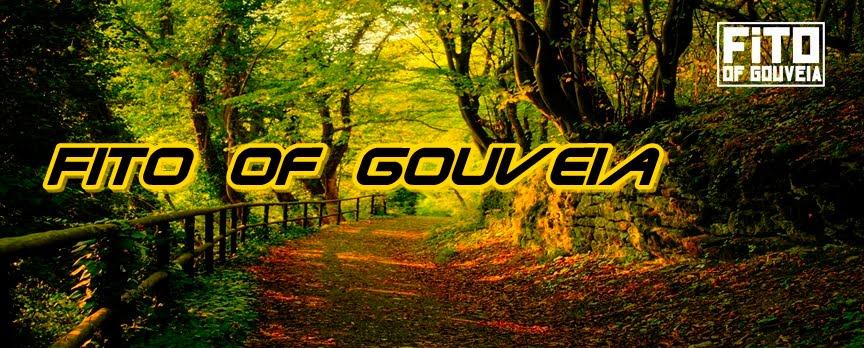 Fito of Gouveia