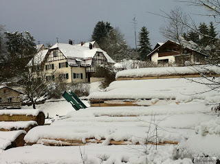 wood cutting factory in the snow
