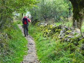 Le « chemin » entre Saint-Chély et Saint-Côme d'Olt. Photo © WL
