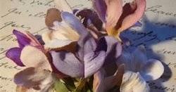 Best Soft, Powdery Violet Fragrances (via Reader's Mail Request)