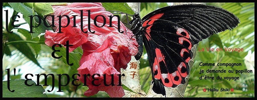 Le Papillon et L'Empereur