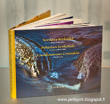Nordens krokodil / Pohjolan krokotiili / Scandinavian crocodile ---- 38 €        mr.birtz@gmail.com