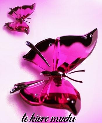 imagenes de te quiero en mariposas
