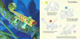 Como Hacer un Camaleon con Pinzas de Ropa y cartulina, Manualidades Infantiles