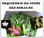 Orquidário do Jones
