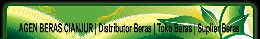 Beras_IR 42