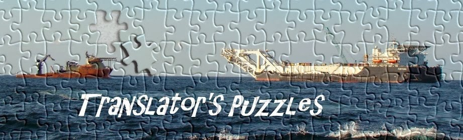 Translator's Puzzles
