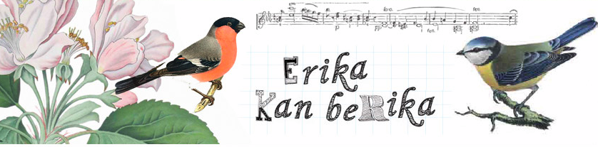 Erika kan berika