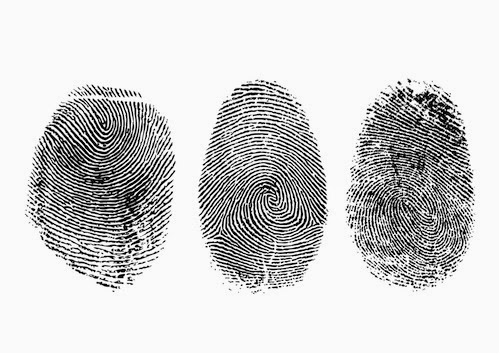 fingerprint evidence The fbi's criminal justice information services divisions provides a variety of services, information, and training involving fingerprints and other biometrics.
