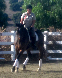 Dressage at Oak Breeze