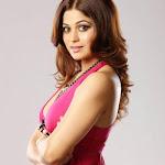 Shamita Shetty  Hot in Pink Dress  Pics